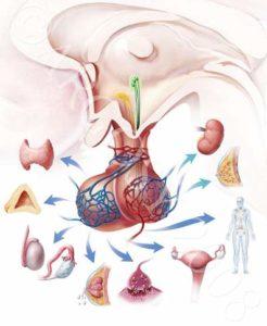 fibroadenoma-3