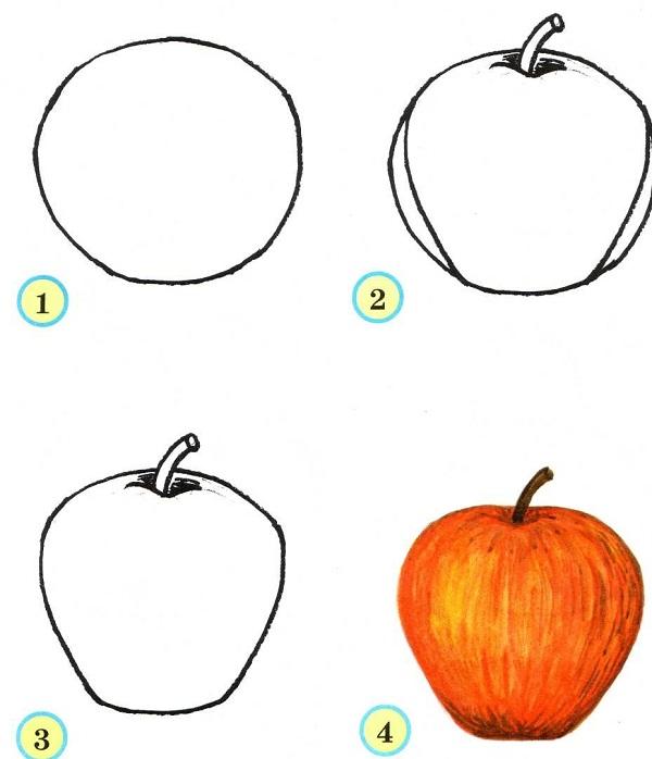 рисунок яблоко карандашом